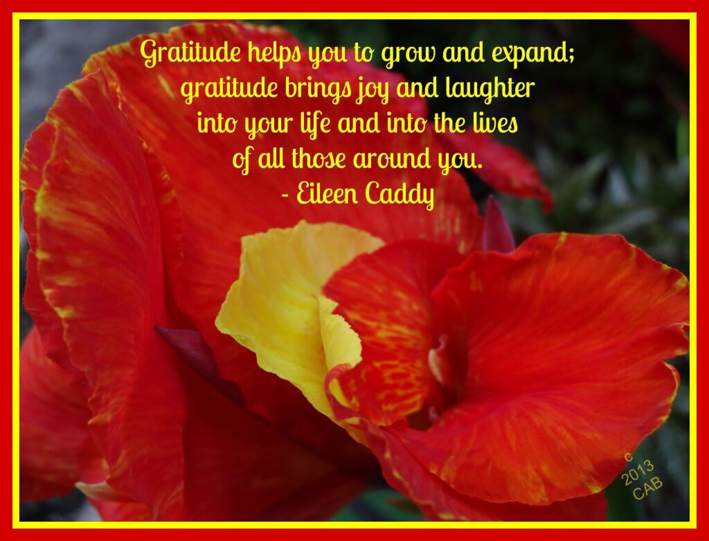 Gratitude helps you grow