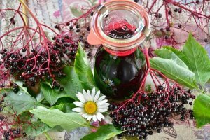 Benefits of Elderberries